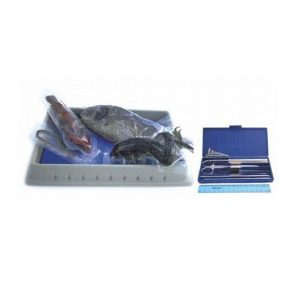 BIOLOGY-DISSECTION-SET-WITH-SPECIMENS-300x300